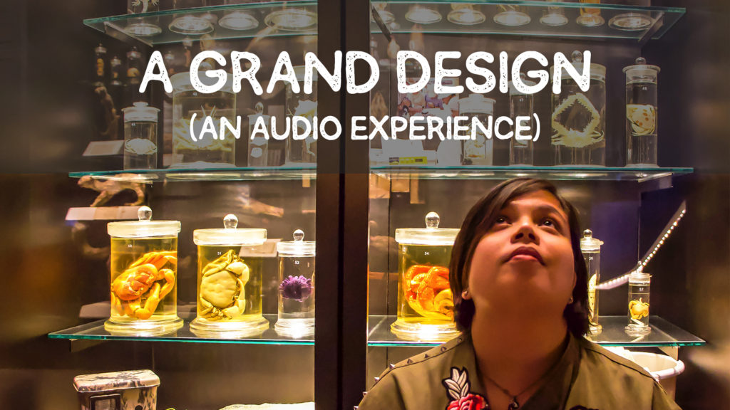 A Grand Design (An audio experience)